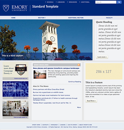 Screenshot from Emory Standard Template System